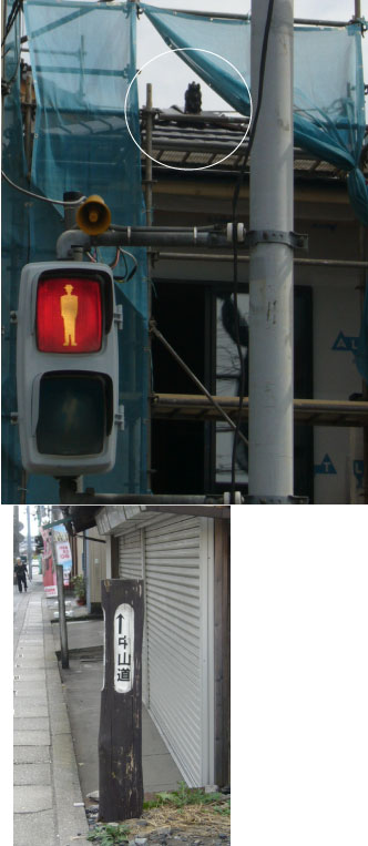 syoukisama.jpg